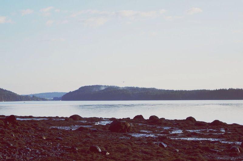 Maine Landscape Sunrise Nature