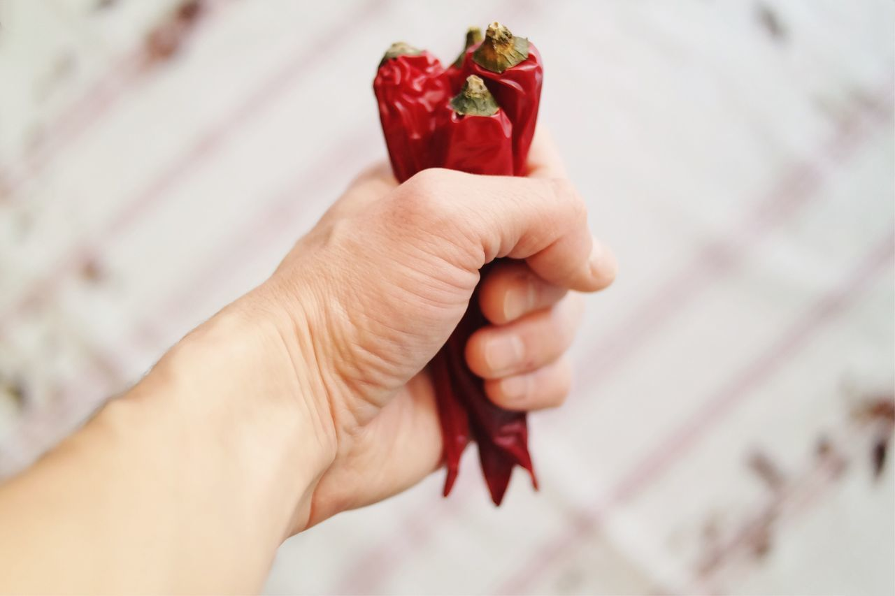 Hot temper... Human Hand Human Body Part Red Holding Close-up Freshness Details Of My Life Found On The Roll My Favorite Photo Made In Romania Fresh On Eyeem  Vscocam Chilli Peppers Kitchen Cooking Natural Light Food Spicy Food Hot Tasty Vegetables Ingredients Spicyfood Fist