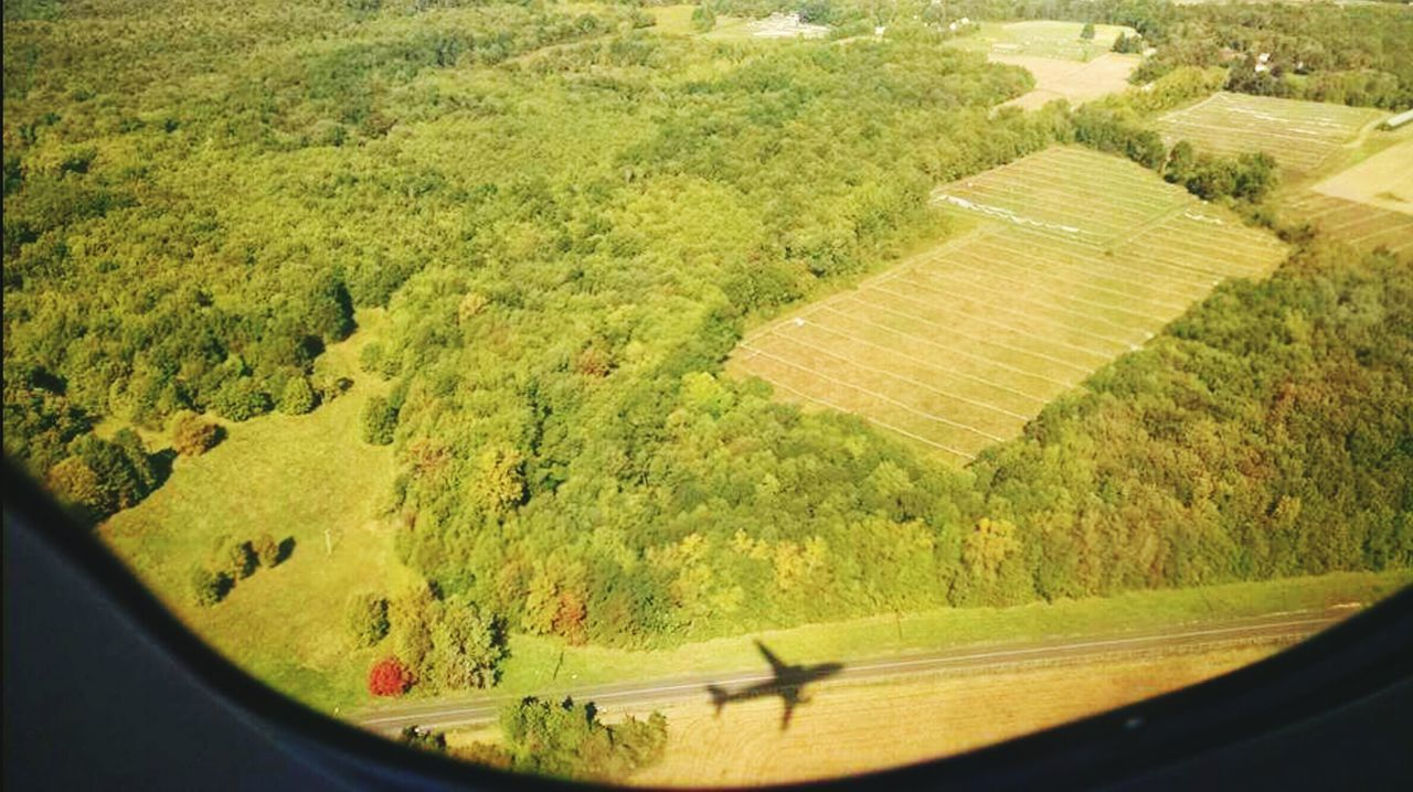 Airplaneview Aerial Shot Aerial Photography Shadows Trees Earth_escape Earth View Landscape Up High Looking Down Up High Looking Down Planet Earth Airplanewindow Window View Flying High Flyover Travel Photography Travel Views