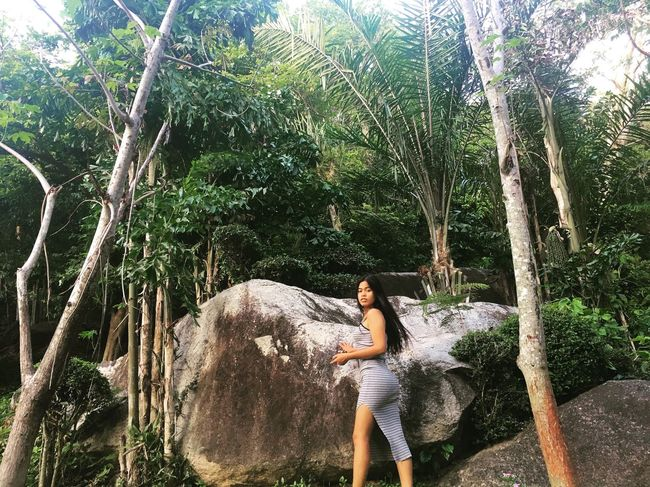🌿🍃🌱 Forest Jungle Green Tree Nature Lifestyles Tree Trunk Vacations Relaxation Around Me Photography Mlife Happy Freshness Nice Day Have A Nice Day♥