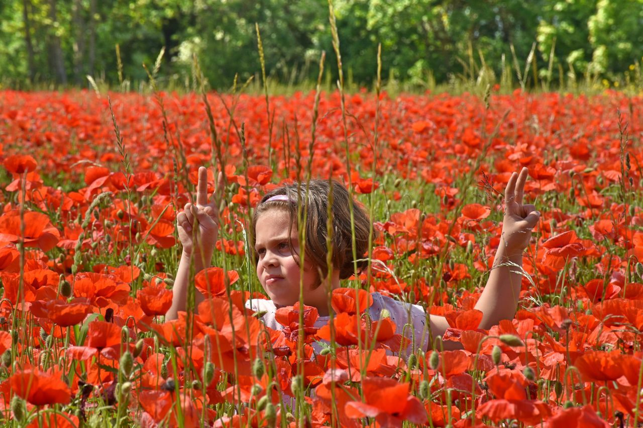 Flower Crop  Plant Field Growth Nature Agriculture Adult Red Poppy Rural Scene Outdoors People Adults Only Only Women One Person Day Headshot Human Face Women Child portrait EyeEm Best Shots - Flowers Ey