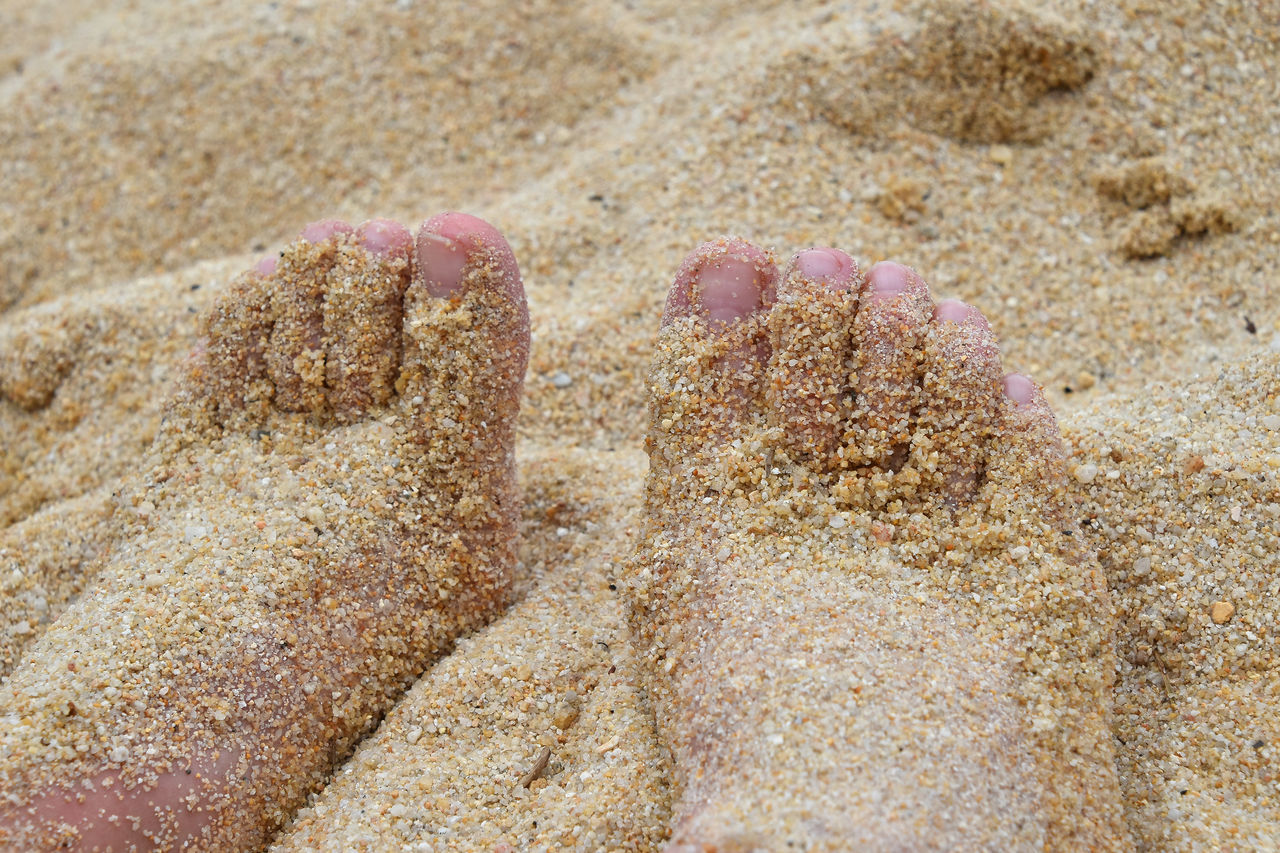 Feet toes covered with sand at the beach Beach Beach Day Beach Life Beach Time Close-up Day Feet Feet Toes Foot Nature Nature Outdoors Peeling Relax Relaxation Relaxing Relaxing Moments Relaxing Time Sand Sommergefühle Summer Summertime Vacations Done That.