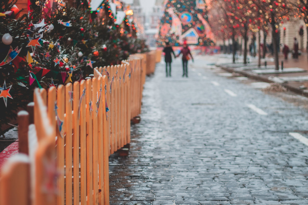 Architecture Christmas Christmas Decoration Christmas Decorations Christmas Lights Christmas Tree Christmastime Evergreen Fence Outdoors
