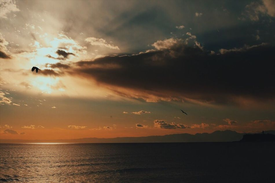 Adapted To The City kamakura Sea Sunset Nature Zeiss Eyemphotography EyeEm Best Shots Vscogood The Week Of Eyeem Planar50/1.4 OpenEdit Canon Sky Vscocam