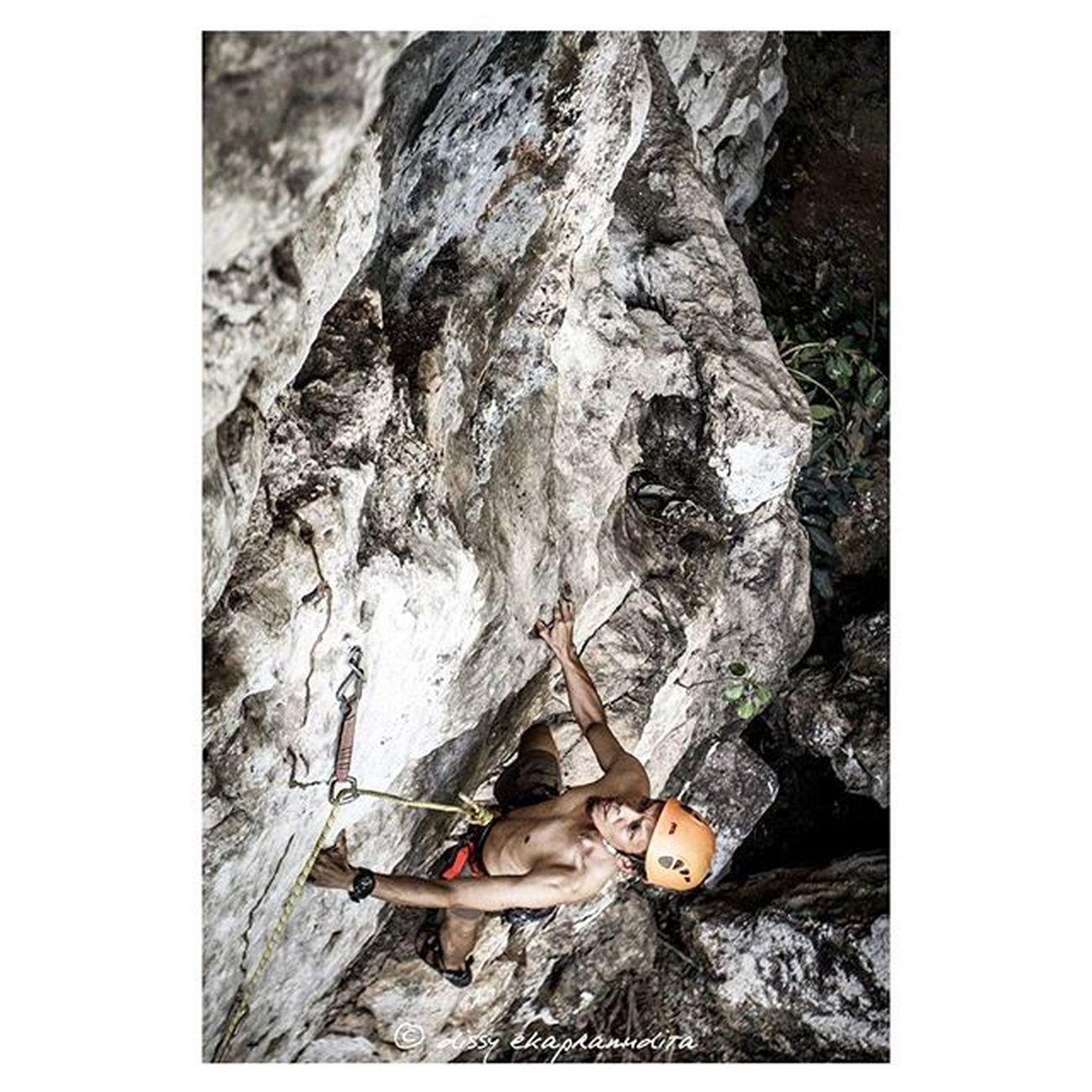 in action Climber RockClimbing Petmet Petzlgram Petzl 1000kata INDONESIA Natgeoadventure Nationalgeographic Asiangeographic Instalike Instagram Instagood Instadaily Instamood Photooftheday