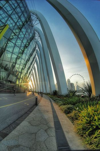 Garden by the bay Architecture Built Structure Sky Modern No People Day Building Exterior Outdoors City
