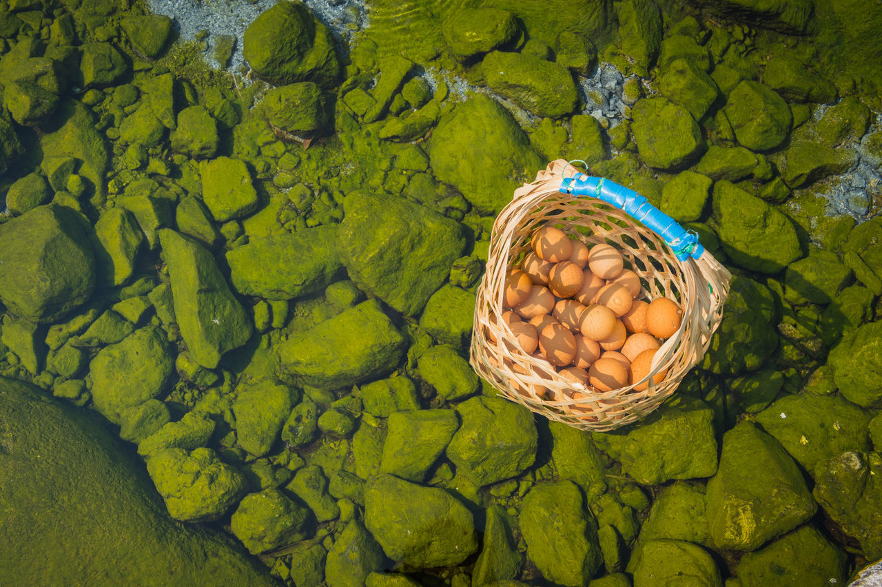 High Angle View Of Wicker Basket With Eggs In Hot Spring Pond