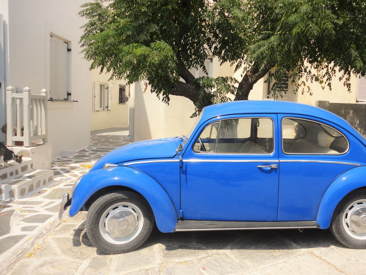 Architecture Beetle Blue Blue Beetle Blue Car Car Greek Greek Islands Mein Automoment Outdoors Parked Parking Stationary Tree