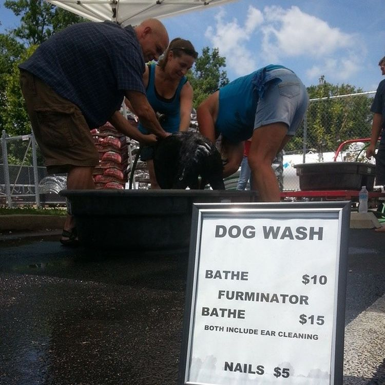 Let me wash your dog today! All proceeds go to Tn Death Row Dogs! ♡ DogWash RescueLife Rescue SpringHillTN