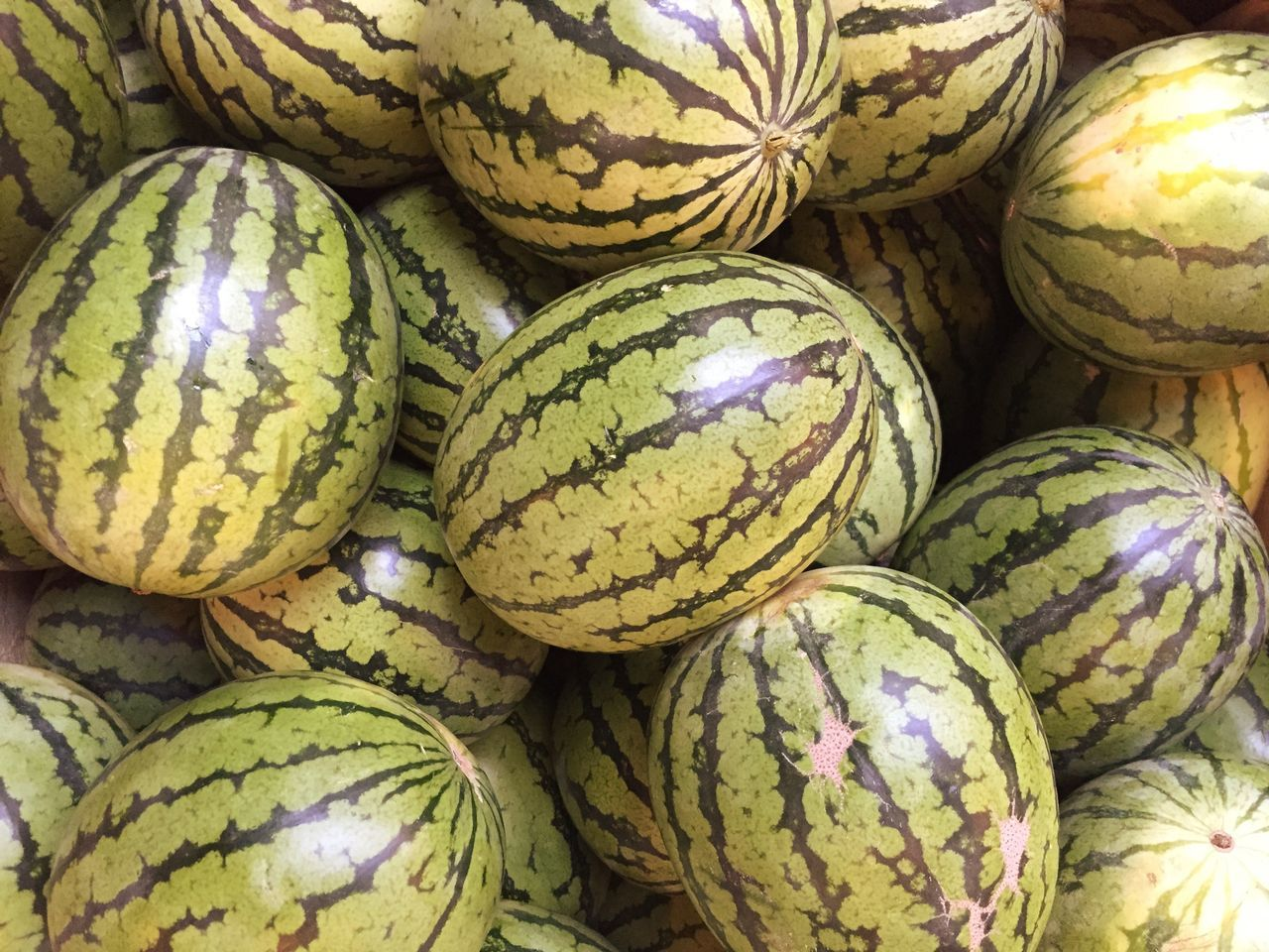 Melon Melons Water Melon Water Melons Fruit Food