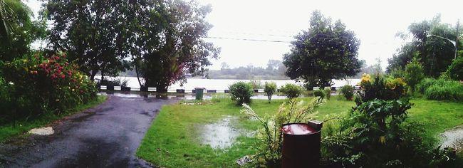 Rainy day Iphone6 Pano Eyem Nature