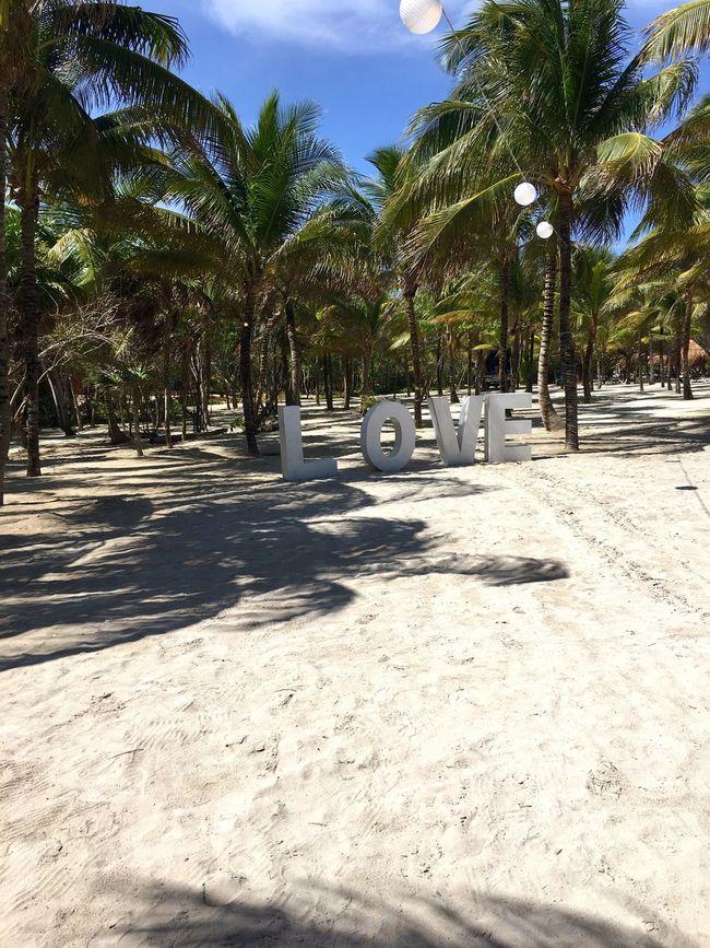 Mexico Playa Love