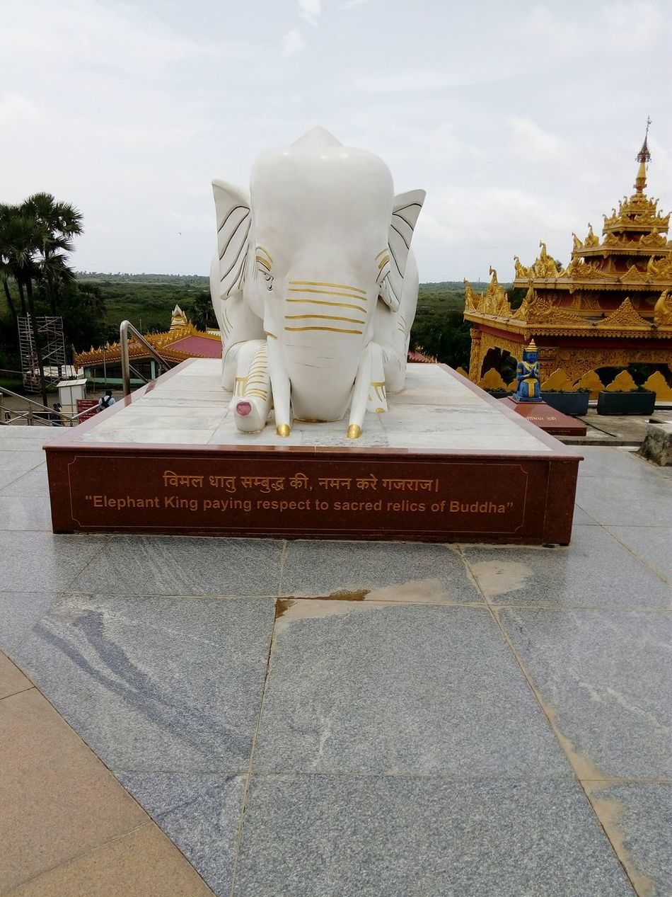 Statue Entranceway Peaceful Place Pagoda India Buddhism Culture Buddhism Temple Famous Landmarks India_clicks International Landmark Travel Photography Buddhism Famous Places Pagoda Naturephotography Nature Sky Elephant Statue
