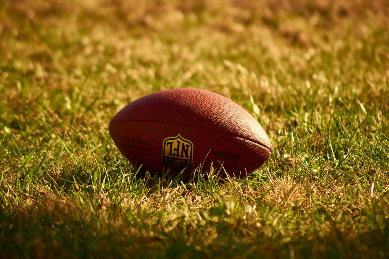 Grass Close-up Outdoors NFL NFL Football Football Sports Sports Photography Summer Ball Sony A58 Bokeh Photography