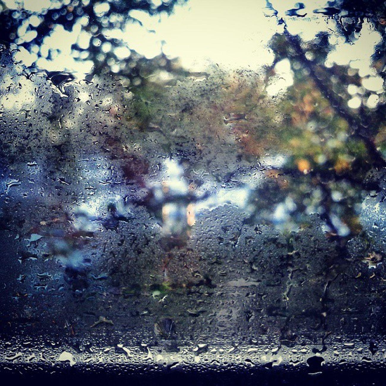 Drops on the glass. Rain Raining RainyDay Tagsforlikes pouring rainydays water clouds cloudy photooftheday puddle umbrella instagood gloomy rainyweather rainydayz wet splash TFLers downpour instarain Russia