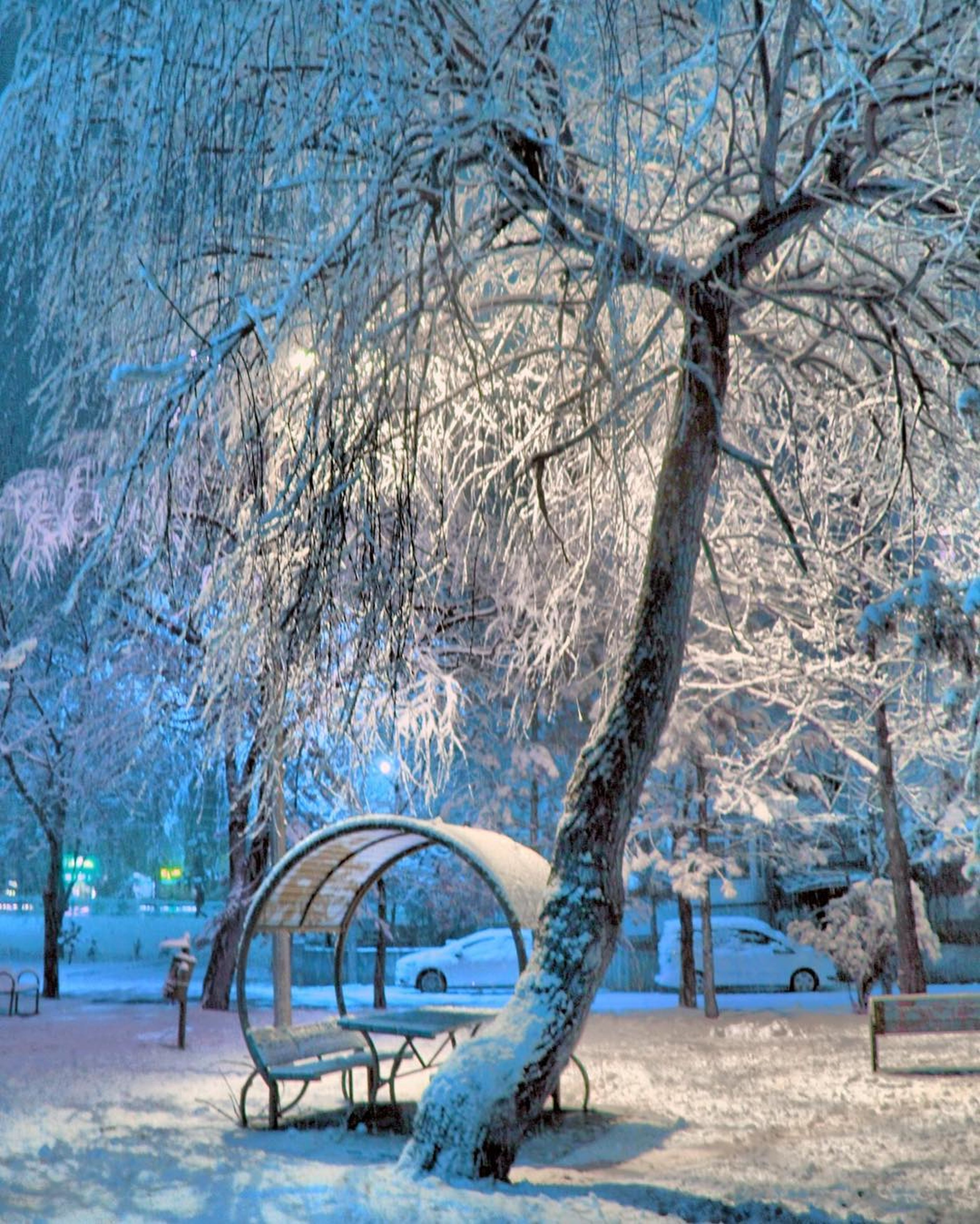 tree, winter, cold temperature, snow, bare tree, branch, blue, playground, park - man made space, nature, outdoors, scenics, no people, beauty in nature, tranquility, childhood, day, sky, close-up