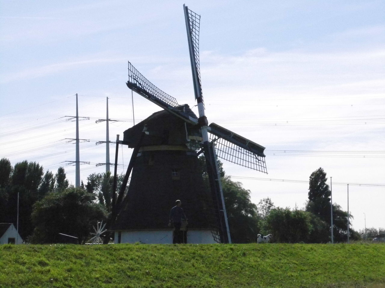 alternative energy, wind power, renewable energy, wind turbine, windmill, environmental conservation, fuel and power generation, traditional windmill, field, tree, sky, grass, industrial windmill, technology, no people, day, outdoors, nature, architecture