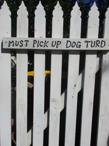 Dogs Humor Picket Fence Sign Signs Text Wooden Fence Antisocial Close-up Communication Day Dog Domestic Animals Humour No People Outdoors Pets Semiotics Signstalkers