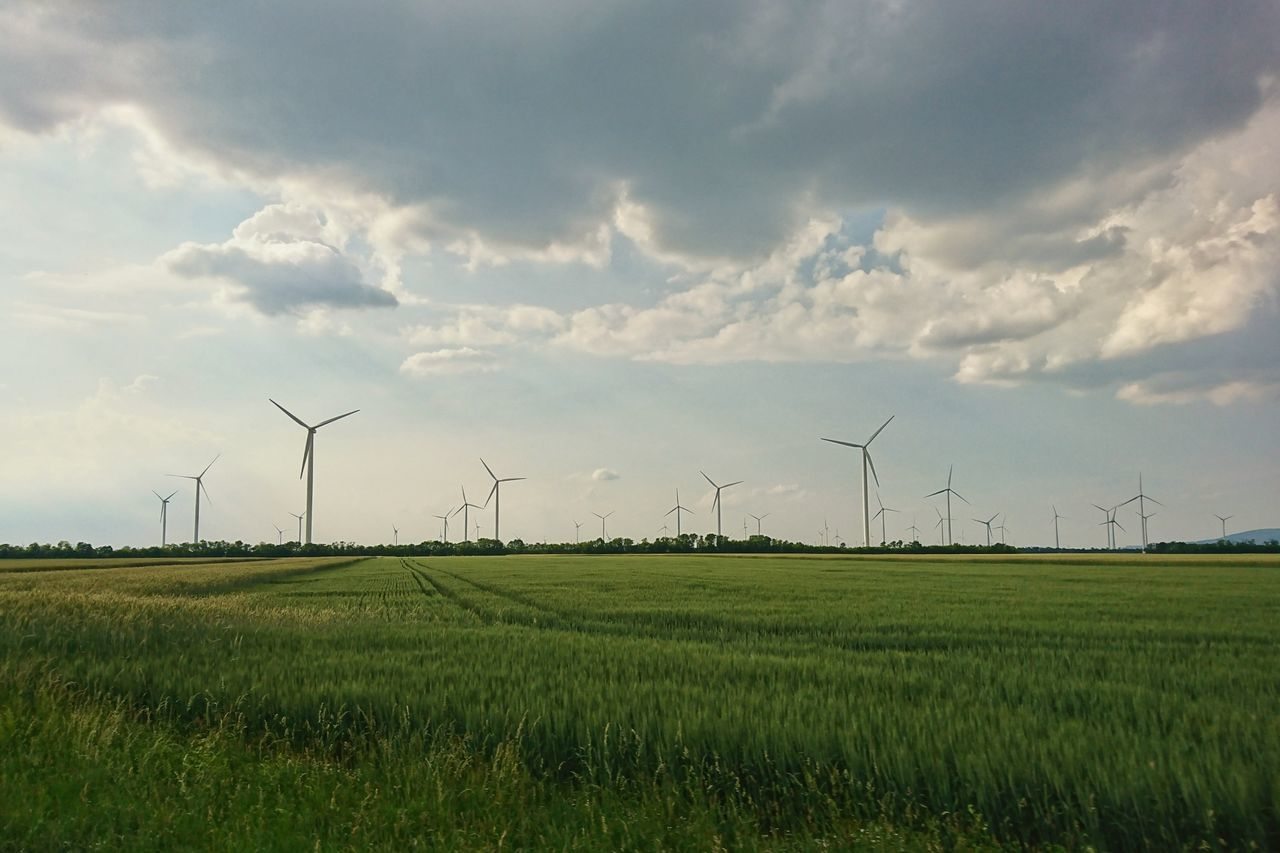 environmental conservation, alternative energy, wind turbine, wind power, renewable energy, fuel and power generation, windmill, industrial windmill, field, rural scene, outdoors, sky, agriculture, nature, no people, day, cloud - sky, beauty in nature, landscape, technology, grass, traditional windmill