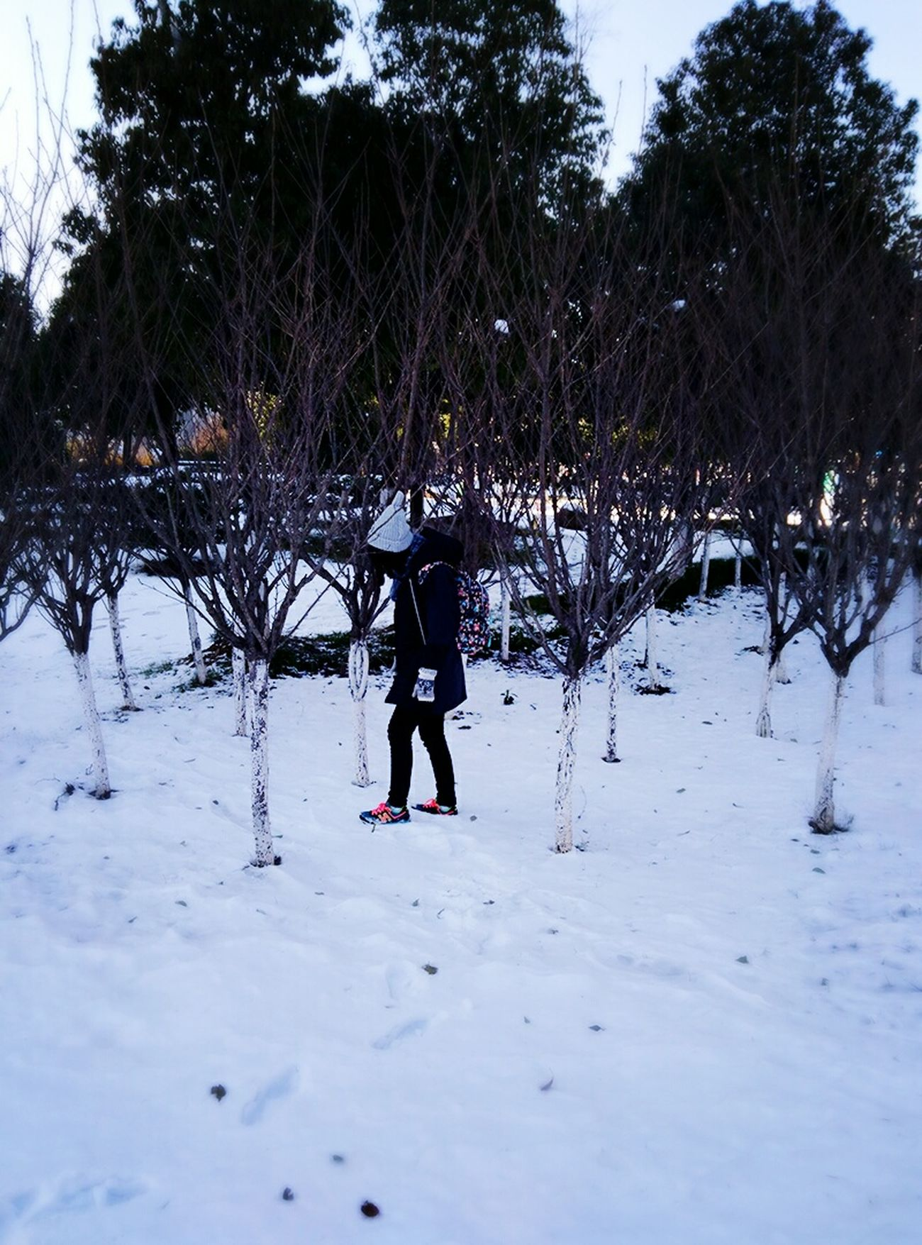 Relaxing Travel Stay Taking Photos Old Town Free Time Snowing Enjoy Life Snow ❄ Relax Nature PhonePhotography That's Me! On The Road Good Wether Life