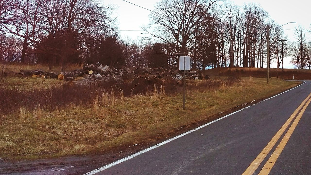 tree, road, bare tree, the way forward, transportation, day, no people, tranquility, outdoors, nature, built structure, grass, clear sky, sky, architecture