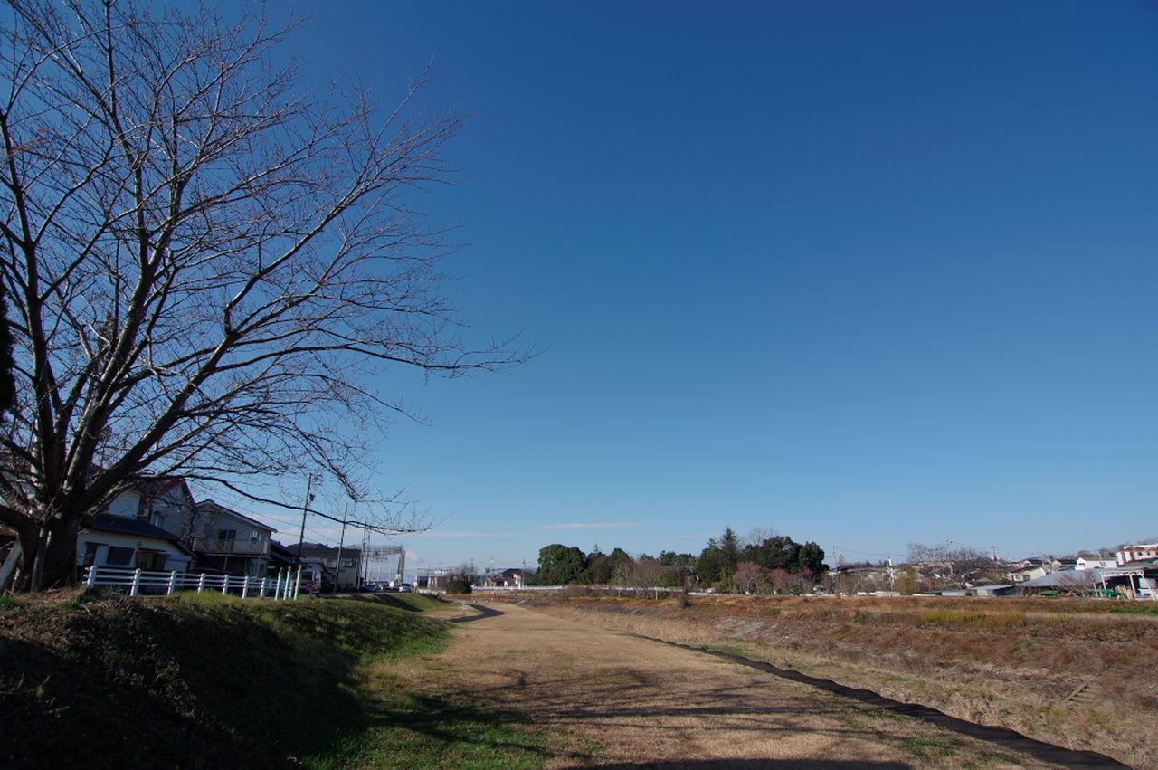 いつもの散歩道。今日はいい天気だ~ Blue Clear Sky Sky Outdoors Tree Nature Walking Path Good Weather 広角レンズ 広角