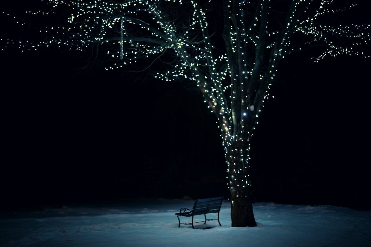 Capture The Moment Darkness And Light Lonely Bench Tree Illuminated Fantasy Illumination Depth Of Field Still Life Fine Art Abstract Winter Landscapes Street Photography Uzu St. EyeEmNewHere Adapted To The City Nature Tranquil Scene Full Frame Detail Sigma EyeEm Best Shots 17_01