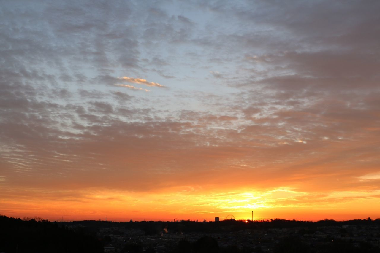 朝焼け Sunset Sky Building Exterior Architecture Built Structure Orange Color No People Silhouette City Scenics Cloud - Sky Nature Beauty In Nature Cityscape Outdoors Dramatic Sky Tree Romantic Sky Sunrise Sunrise Silhouette