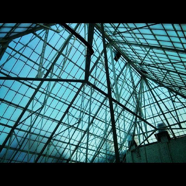 Roof Rooftop Stpeterburg Spb