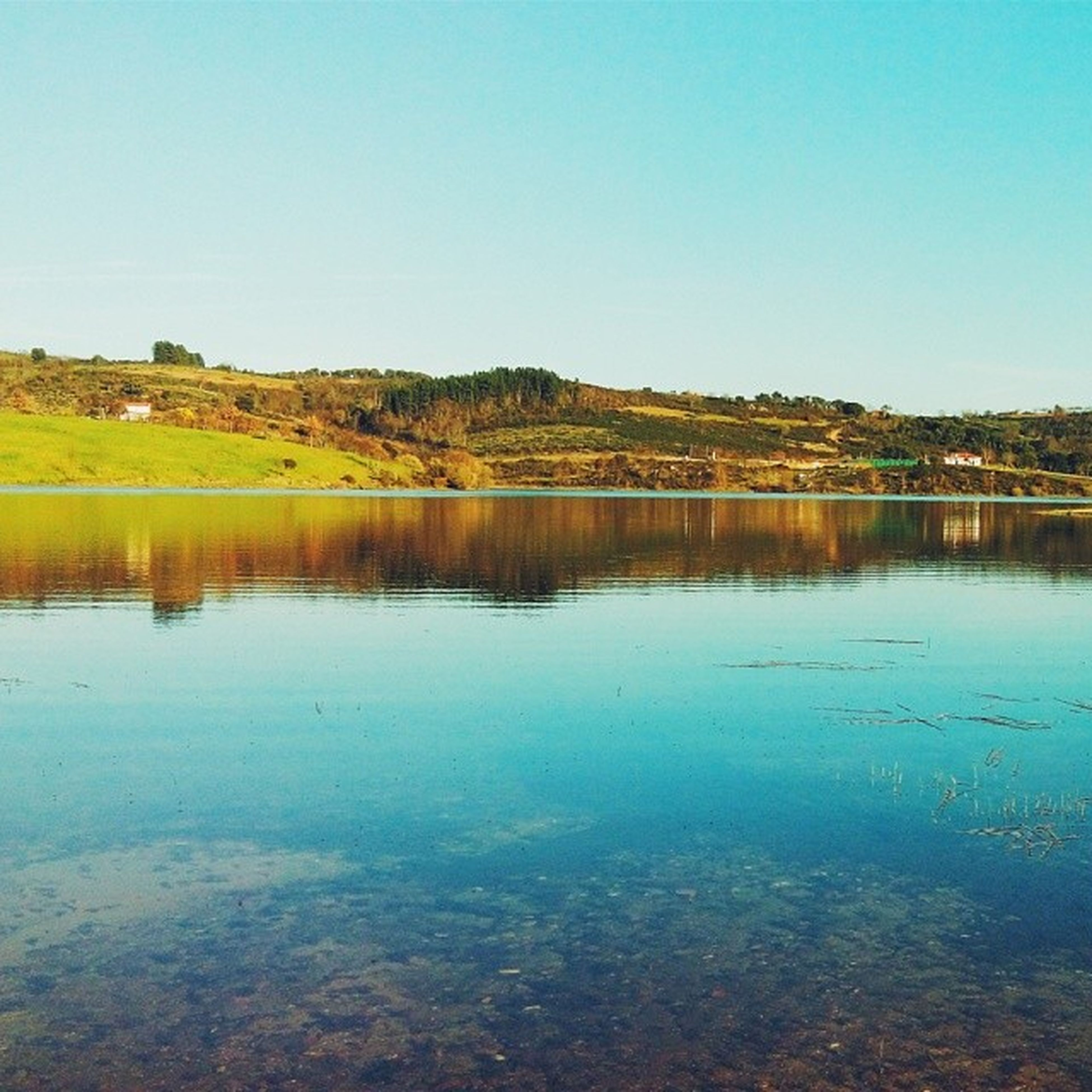 clear sky, water, blue, reflection, lake, tranquil scene, tranquility, copy space, scenics, beauty in nature, waterfront, nature, tree, idyllic, standing water, calm, day, no people, outdoors, non-urban scene