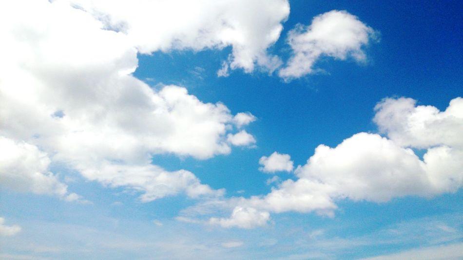 Blue sky & white cloud Good Day Nice Weather Blue Sky White Clouds Relaxing EyeEm Best Shots Enjoying Life Beautiful Day Hello World Fulong