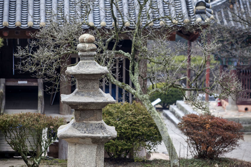 Architecture Art Art And Craft Buddhism Temple Building Exterior Built Structure Byunsan Creativity Cultures Day Eaves Human Representation Naesosa Ornate Outdoors Religion Sculpture Spirituality Statue Stone Tower Tiled Roof  Tree