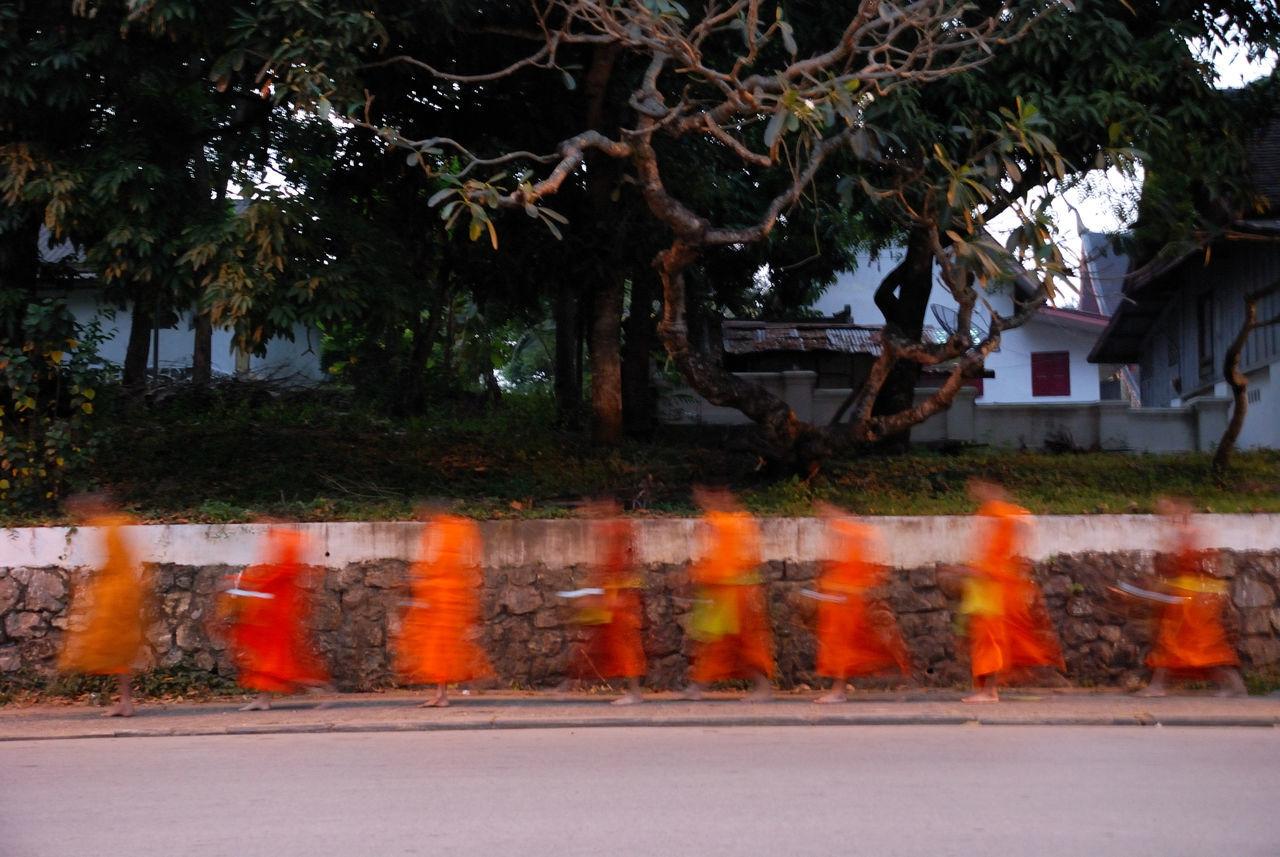 Beautiful stock photos of orange, Blurred Motion, Buddhism, Clothing, Day