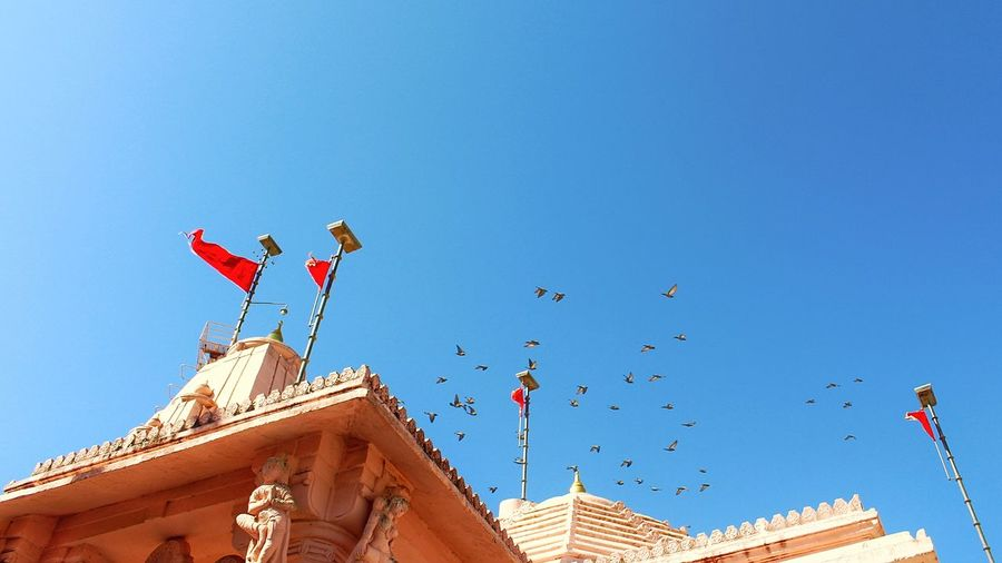 Flag Blue Sky Sunny Day Clear Sky Flying Outdoors Architecture Low Angle View Travel Destinations No People Royalty Bird Politics And Government King - Royal Person The Photojournalist - 2017 EyeEm Awards The Architect - 2017 EyeEm Awards Rock Face Temples Of India Ancient Civilization Nature Red Temple Architecture Architecture Of Temple