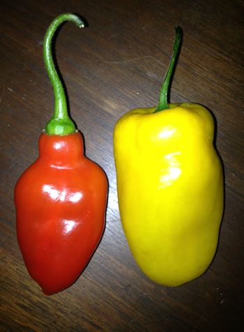 Food Full Frame Healthy Eating Hot Red Rocotto Peppers Spicy Vegetable Yellow