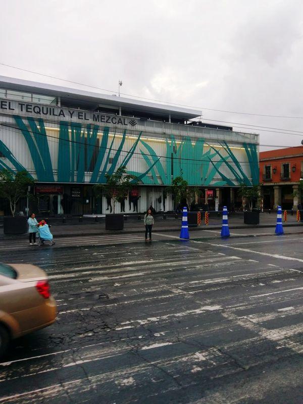Miles Away Museo del Tequila y el Mezcal