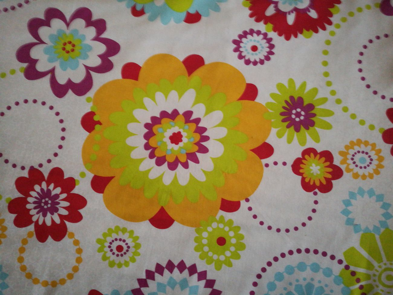 Colcha Flores Flower Multi Colored Art And Craft Pattern Creativity Variation No People Close-up Indoors  Day