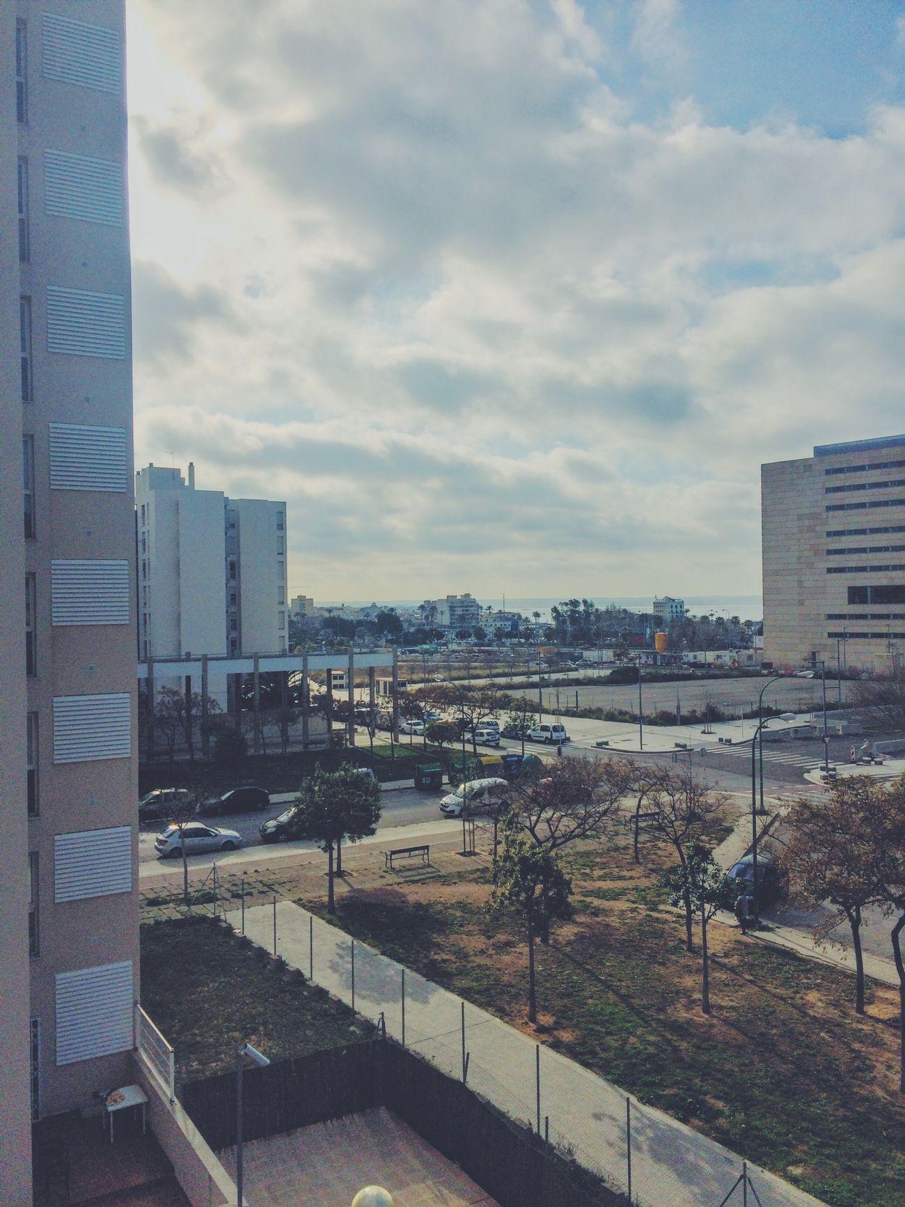 Buenos dias! Mallorca Palma De Mallorca Roomview