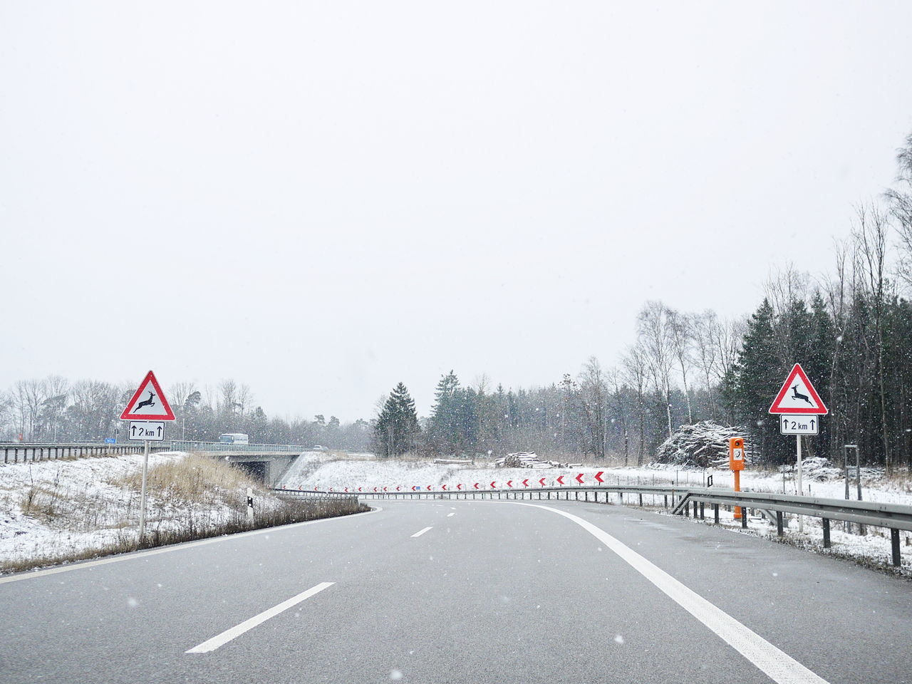 Achtung Cold Temperature Composition Copy Space Deer Crossing Direction Guidance Horizon Over Land Journey Land Vehicle Landscape Leading Outdoors Perspective Remote Road Sign Snow The Way Forward Traffic Transportation Weather Wild Wildwechsel Winter