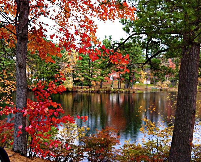 'Autumn in New Hampshire 7.1' ... Autumn Water Reflections Time To Reflect Drimagez IPhoneography Autumn Colors