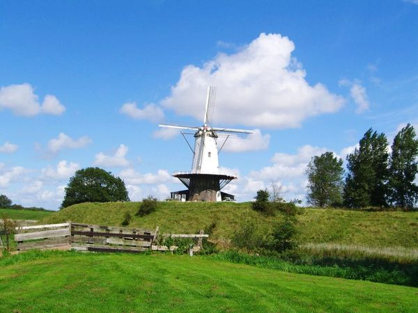 Mill in the United Kingdom of the Netherlands. Molen De Koe Windmühle Windmill Dream Zeeland❤️ Environmental Conservation Wind Power Wind Turbine Windmill Alternative Energy Traditional Windmill Cloud - Sky Outdoors Renewable Energy Technology Grass Nature Tree No People Sky Day