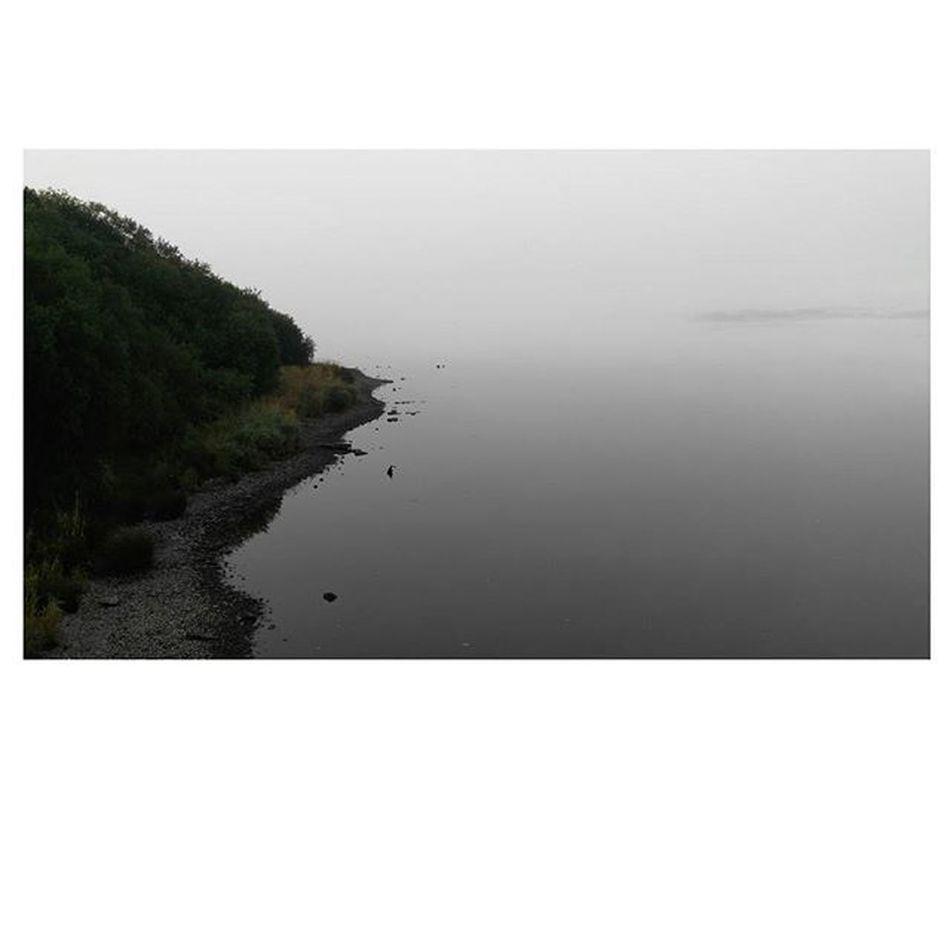 LEE RIVER Lee River Nofilters Views Lovely Nice Fog Bridge Morning Macroom Cork Ireland Instadaily