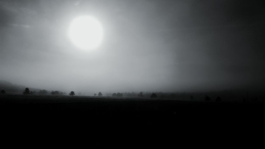 Dark Landscape Nature Horizon Over Land Apocalyptic Sun EyeEm Dramatic Landscape France Silent Moment Tree Overnight Success Monochrome Photography Eyem Best Shots