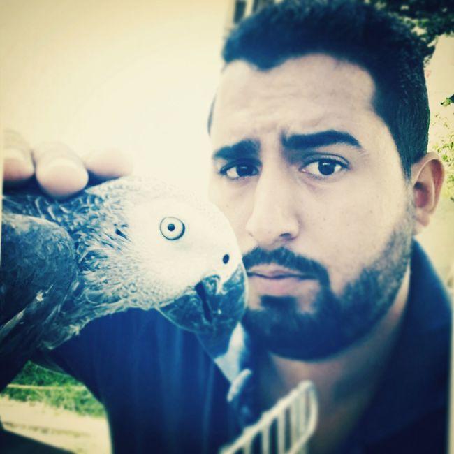 Selfie With My Friend ?? My Parrot Tripoli