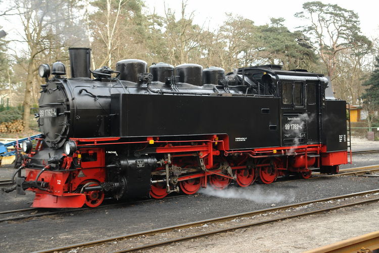 Baltic Sea Rasender Roland  Day Locomotive Mode Of Transport No People Outdoors Rail Transportation Railroad Track Steam Train Train Train - Vehicle Transportation Tree W-rügen