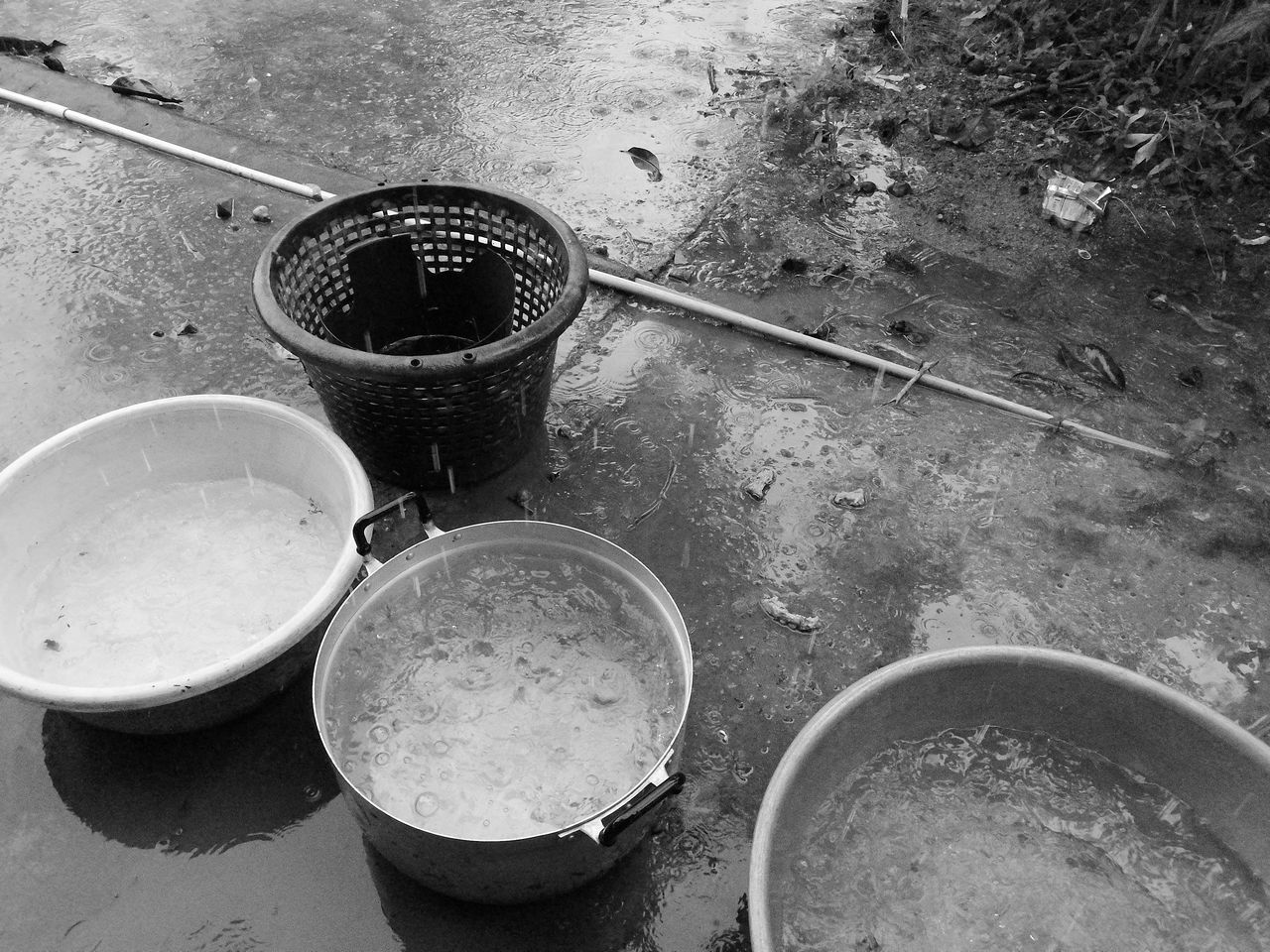 Chance Encounters Chance Water Basin Basın Water Droplets Reseved Monochrome Black And White Blackandwhite