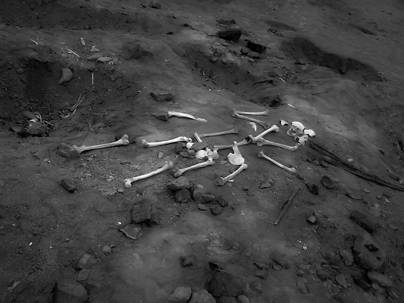 Bonzzle Archeology Bones Cemetery Corpse Ichsma Pampa De Las Flores Sepulcher Skeleton Tomb First Eyeem Photo