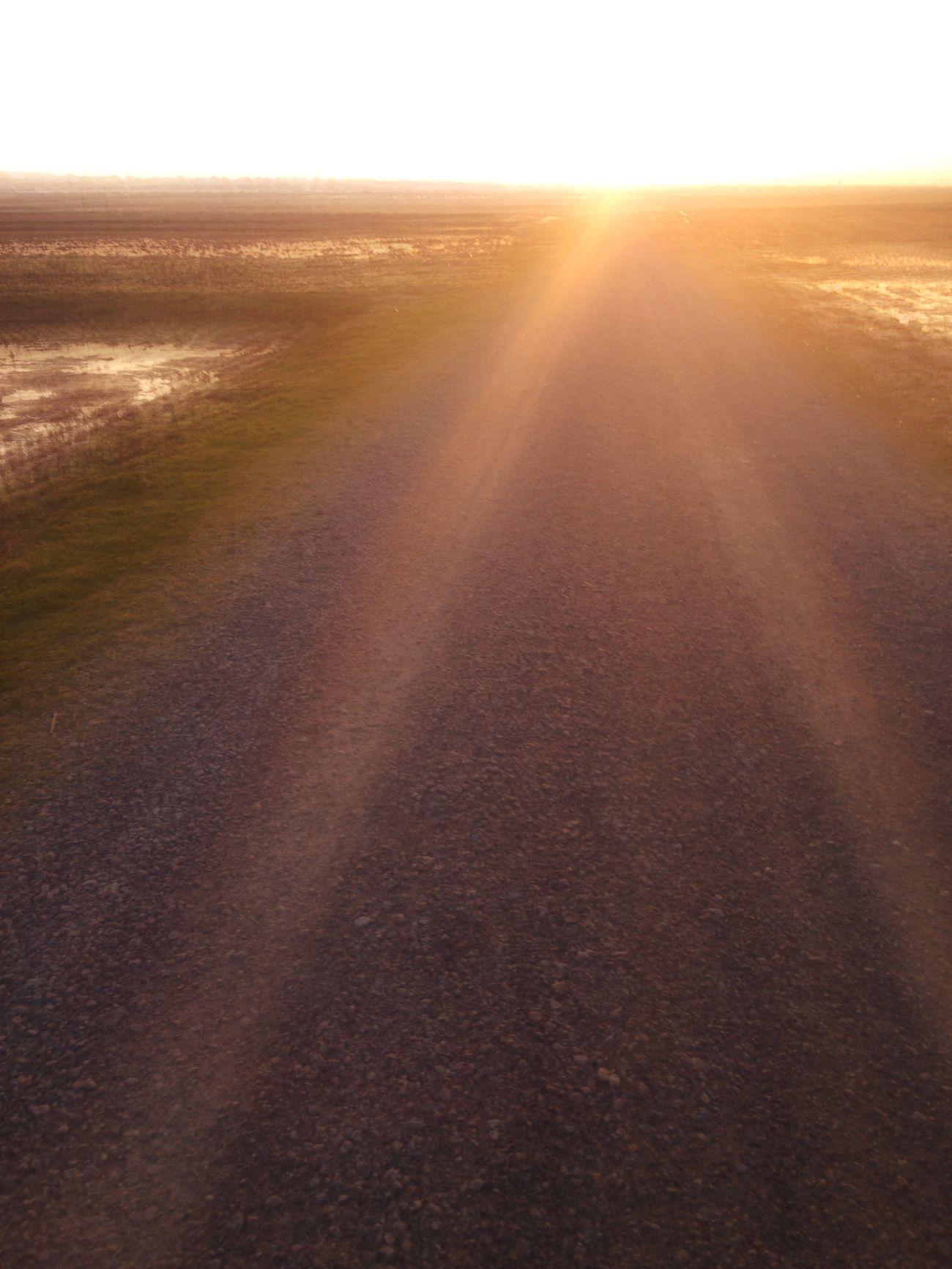 Evening walk Evening