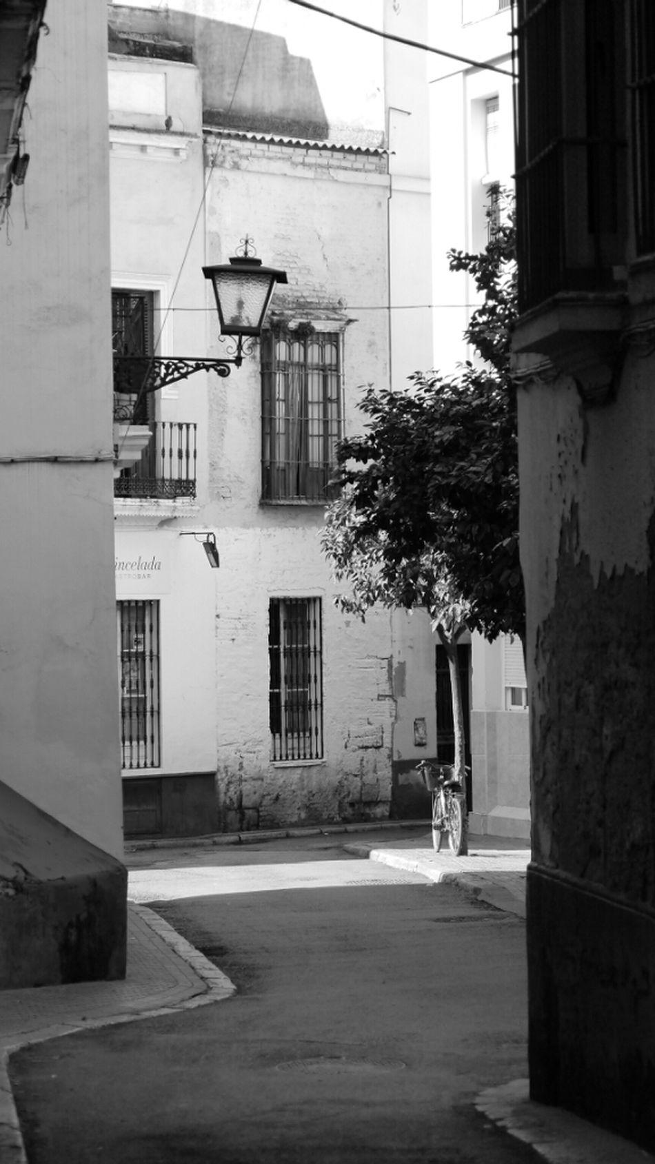 Blackandwhite Bike Alley Monochrome Streetphoto_bw Bws_worldwide Italianbrother Bwstyles_gf