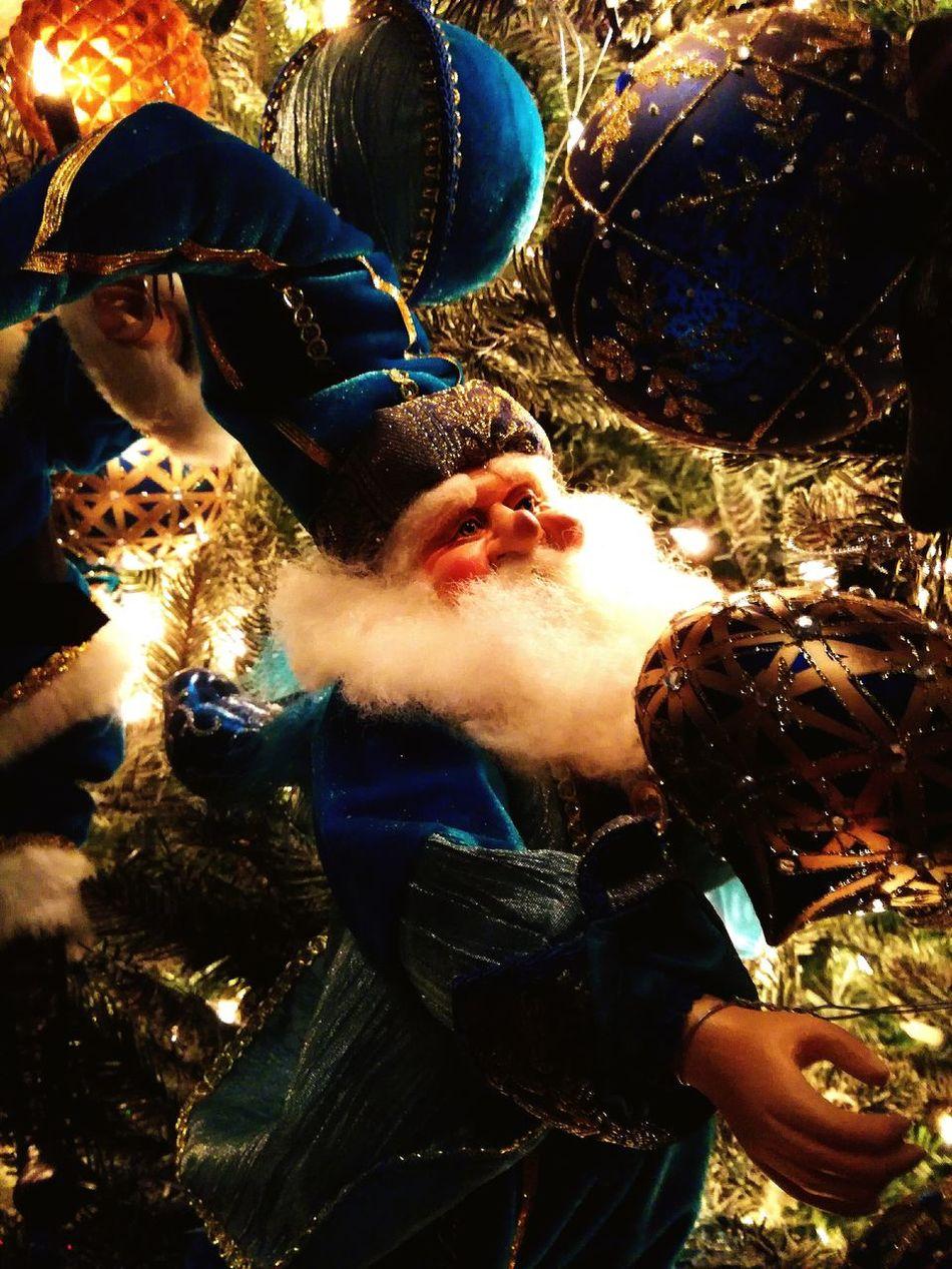 Night Tree Winter Celebration Tradition Christmas Christmas Lights Christmas Tree Illuminated Christmas Decoration Chrismas Tree Arbre De Noël Noel2016 Père Noël